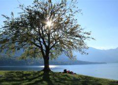O maior lago natura na Eslovênia